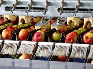 Gıda Endüstrisi
